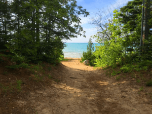 """""""a dirt pathway with trees and foliage along both sides leads to a beach"""