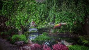 a pond sits in the middle of a garden with hanging trees and bushes with a stone bridge in the background.