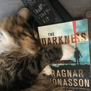 over of the book The Darkness by Ragnar Jonasson with cat